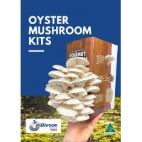 SALE!! BULK RETAIL GROWER PACK Mushroom Kits x 9 Kits IN GIFT BOXES upto 3 types  - FREE Shipping to 90% of Australia - No Po Boxes (ENDS 6/12/20)